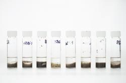 determinazione composti organostannici